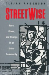 Streetwise  -  Race, Class, and Change in an Urban Community