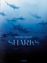 Michael Muller: Sharks, Face-to-Face with the Ocean's Endangered Predator