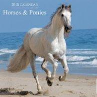 Calendar 2018: Horses & Ponies